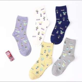 [PREORDER] Cute cactus socks