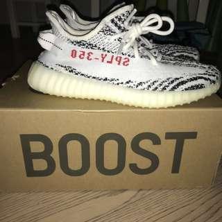 Yeezy Zebra v2 zebra