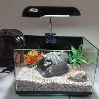 Mini Aquarium with accessories