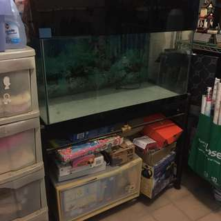 Huge Covered Fish Tank With Stand