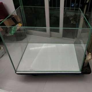 2 Feet crystal clear optical Fish Tank