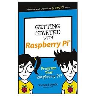 Getting Started with Raspberry Pi: Program Your Raspberry Pi! (Dummies Junior) BY Richard Wentk
