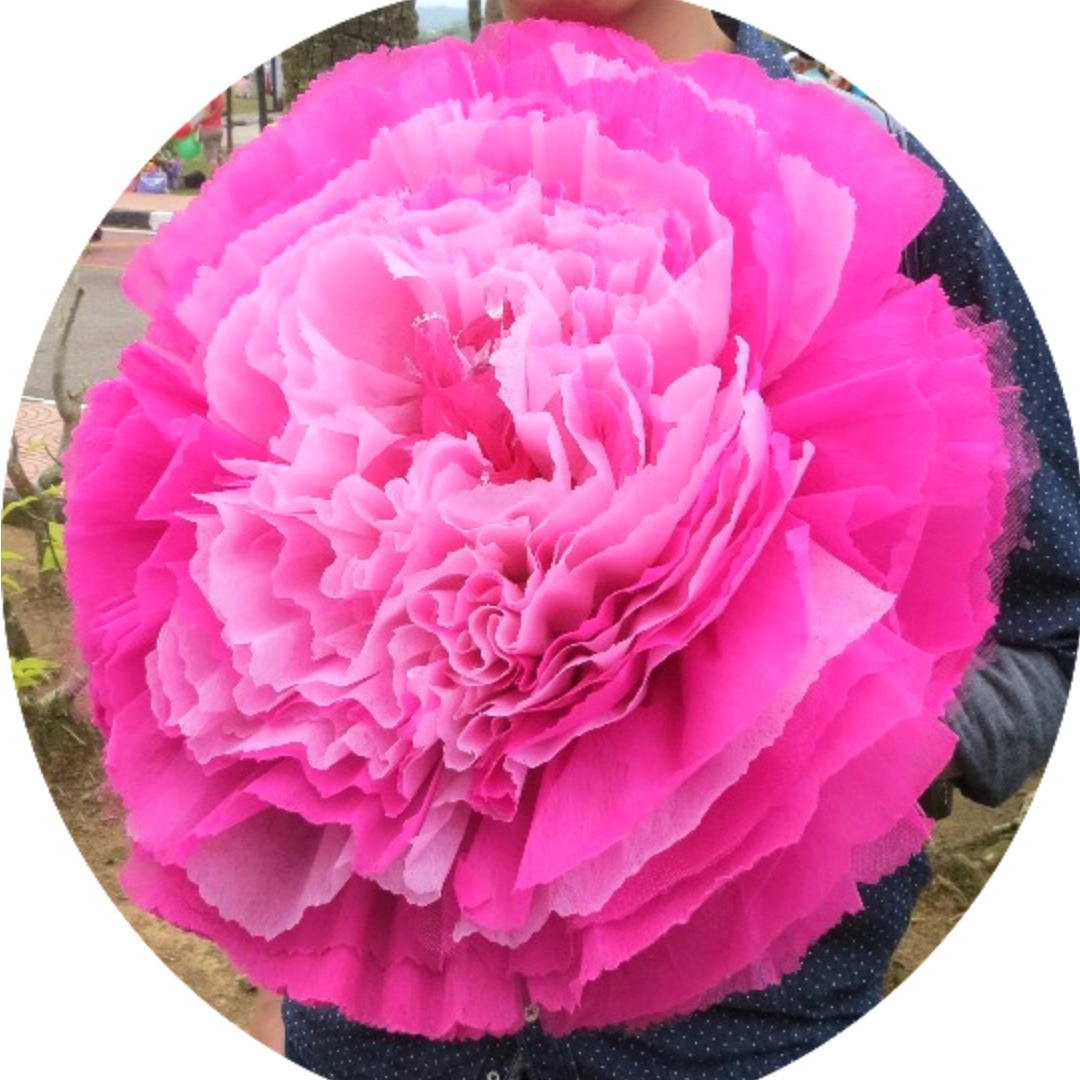 Paper Flower Carnations Large Size Custom Made