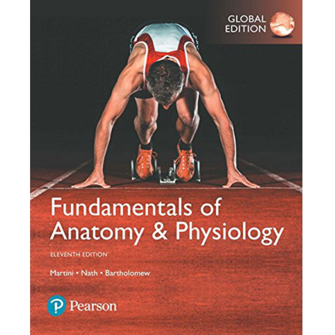Beste Martini Anatomy And Physiology 9th Edition Galerie - Anatomie ...