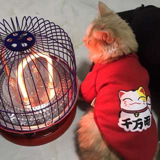 Preorder: CNY pets clothing