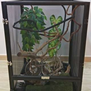 Exo terra cage with accessories for reptiles