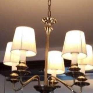Elegant light 華麗高貴吊燈裝飾燈天花燈