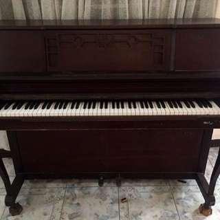 TREBEL VERTI PREMIUM PIANO