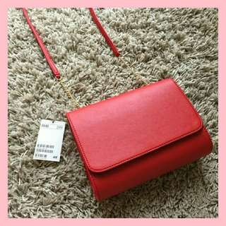 H&M Rose Mini Clutch