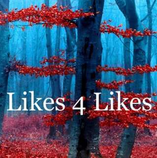 Likes for Likes 29 Max
