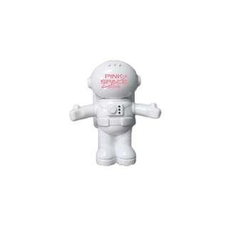 APINK  2018 Concert - Astronaut USB Light