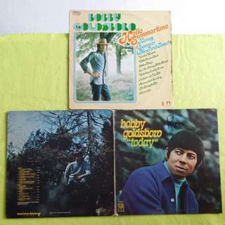 2LP. BOBBY GOLDSBORO. today/ hello summertime. Vinyl record