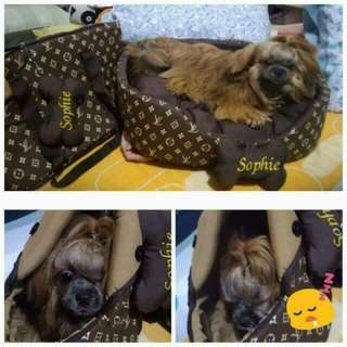 Pet bed and carrier for sale !!!
