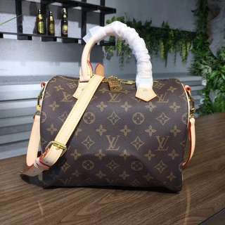 LV SPEEDY MONOGRAM 25