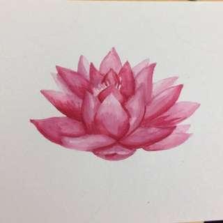 Water lotus - watercolour painting