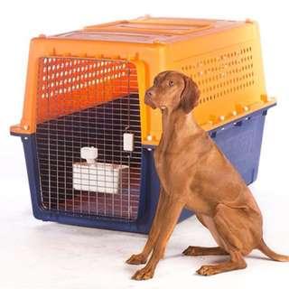 JetPets Dog Crate (L)