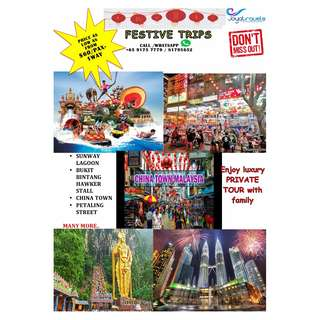 CHINESE NEW YEAR HANGOUTS-LUXURY PRIVATE FAMILY TOUR