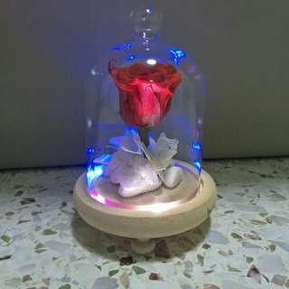 Preserved red rose with Led light