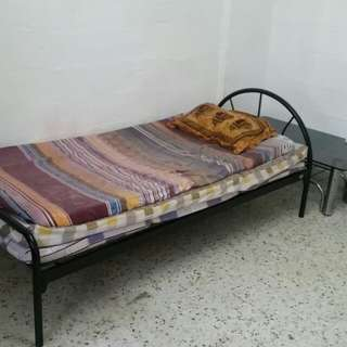 Single Bed Common Room