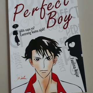 "Novel ""Perfect Boy"""