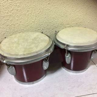 Bongos Drum Music Instrument Percussion