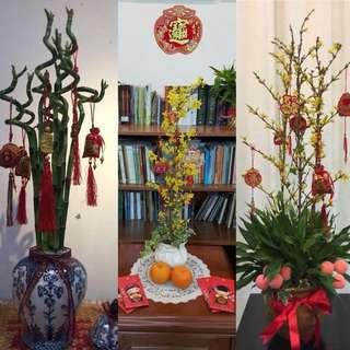 Basic Floral Arrangement (Hands on)