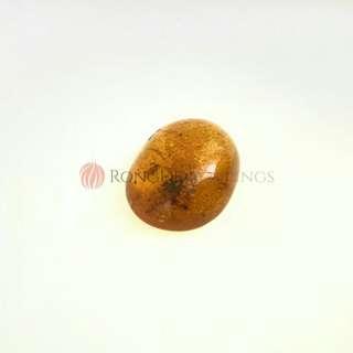 Myanmar Amber (with certificate) (burmite) (琥珀) 2.79g