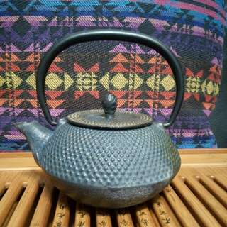 法國Esprit Zen Black Cast Iron Infuser Tea Pot