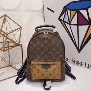 LOUIS VUITTON BAG PACK