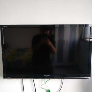 "30"" plasma tv"
