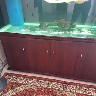 5.5ft x 2.5ft x2.5ft 10mm thick glass tank