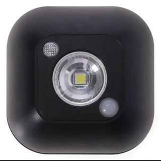 Infrared & Motion Sensor w/ LED lights