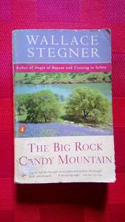 BOOKSALE: The Big Rock Candy Mountain (Novel)