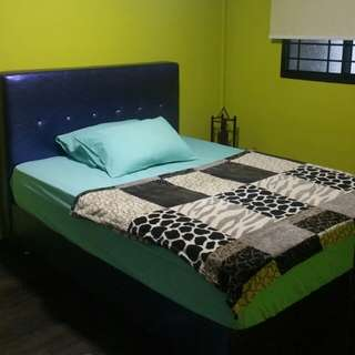 Common Room To Rent Out. (1 Male)