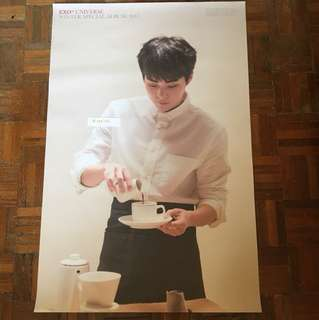 [WTS] EXO Xiumin & Group Posters
