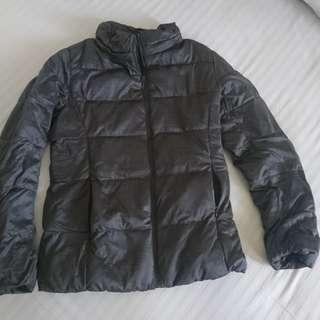 Women Winter Jacket Uniqlo