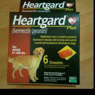 Heartgard Plus For Dog Up To 100 lbs (45kg) Lowest price in town