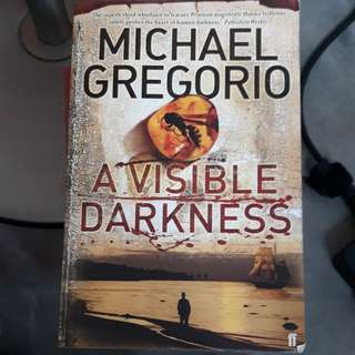 Novel: A Visible Darkness