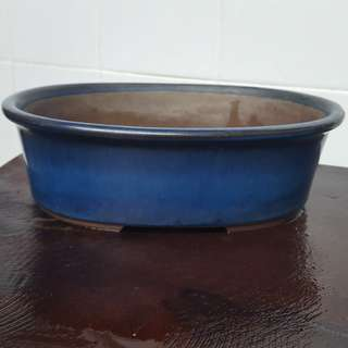 Blue Oval Tokonami Pot