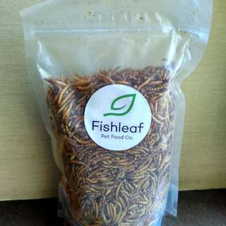 Dried mealworms for hamsters and other pets