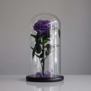Valentine's Day Special - Premium Preserved Roses in Glass Dome