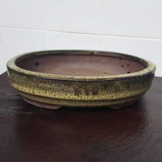 Oval Bonsai Pot