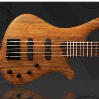 Mayones 5 string Bass Brand New