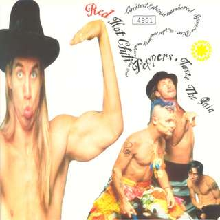Vg+ Red Hot Chili Peppers – Taste The Pain Record limted shaped