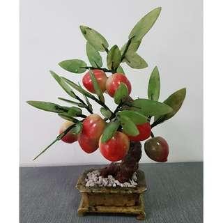 Table Top Jade Peach Tree