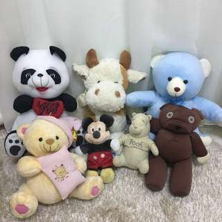 Teddy bear/Plush toys