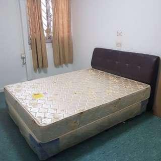 sea horse queen size mattress