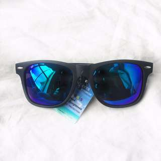 NEW Matte Wayfarer Sunglasses