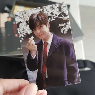 [WTT/LF/WTB] INFINITE Top Seed album photocard