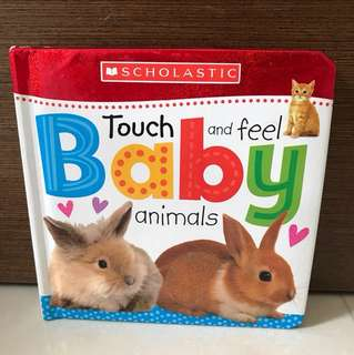 BN Scholastic Touch and Feel Baby Animals
